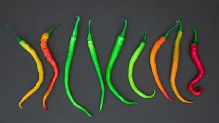 peperoni : Stop Motion of Colorful Chili Peppers isolated on grey background