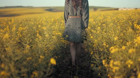 nachový : Back View Of Woman Walking In Flower Field During Day Time