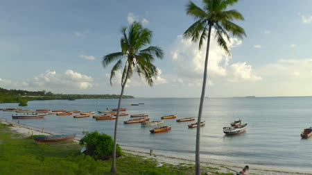 falu : Boats For Fishing On the Seashore. Zanzibar