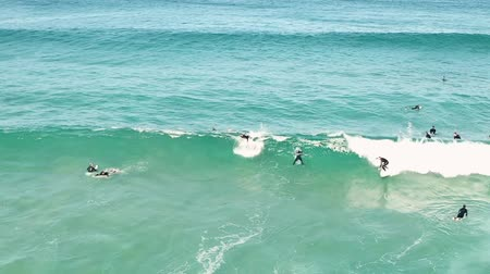 travelling : view of surfers swimming out to sea and catching waves. NSW. Australia. Stockvideo