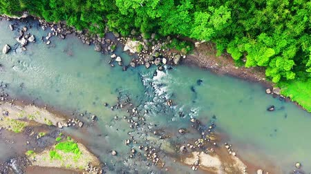 pedras : River Flowing Over Large Rocks Against Lush Vegetation Of Tropical Forest