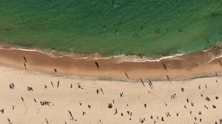 crowded : Aerial Summer View Of People Crowd Having Fun On Beach. NSW, Australia Stock Footage