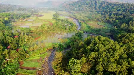 западный : Terraced Rice Paddy On Riverside Village. Aerial View. West Java. Indonesia
