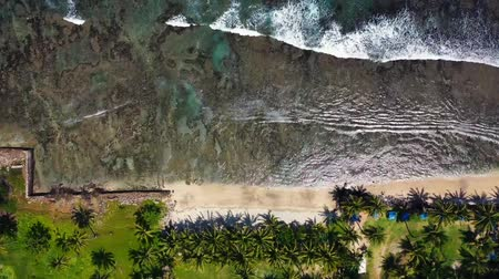tropikal iklim : Series Of Sea Waves Kissing The Coastline. Banten. Indonesia Stok Video