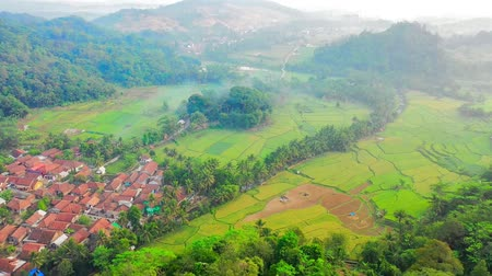 западный : Aerial view Over Rural Asian Village. Next To Rice Paddies. West Java. Indonesia Стоковые видеозаписи