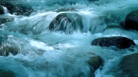 rzeka : Rapid stream in mountain river. Wideo