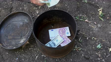 buried treasure : Done dollars and euros from the cache Stock Footage