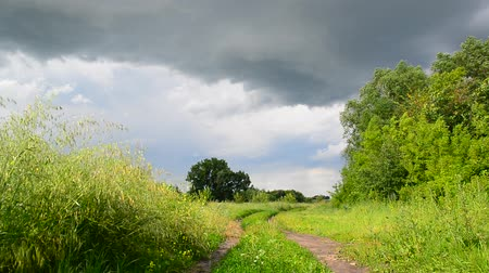gale : Countryside landscape with road before the storm. Russia