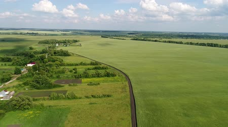 haziran : Green cereal fields on outskirts of the village in Russia Stok Video