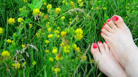 toes : Well-groomed female legs with a red pedicure on green grass