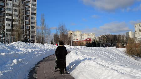 mink : woman with stroller walks on the boulevard in Moscow, Russia.