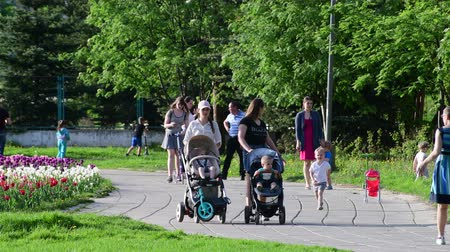 she : Moscow, Russia - May 15. 2018. Moms with strollers walk along boulevard in Zelenograd Stock Footage