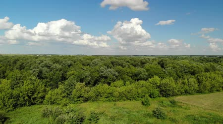 rural area : Rural landscape with forest and ponds in Russia, top view Stock Footage