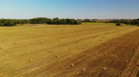 kürek çekme : rise above field with bales of straw
