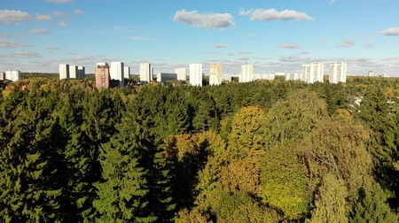 ecologically : Russia. sleeping area of Moscow surrounded by forests