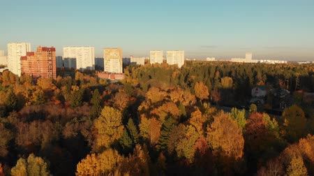 ecologically : Zelenograd district of Moscow in autumn On the Sunset, Russia Stock Footage