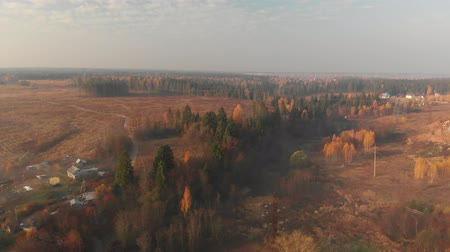 ecologisch : Flying over countryside on a foggy morning in Russia Stockvideo