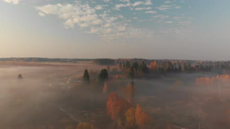rural area : countryside on a foggy morning in Russia