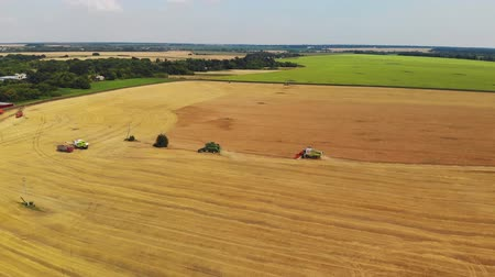 stonky : Lipetsk, Russia - July 29. 2018. Top view of harvesters in field