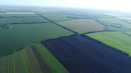 hajtások : fields in Russia taken from very great height