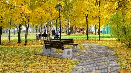 экологически : Moscow, Russia - October 3. 2019. Beautiful city autumn park with a bench
