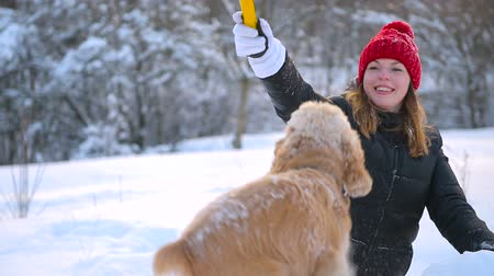 Female play with stick and cocker spaniel at snow Stock mozgókép