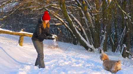 Girl in red hat playing with dog in winter forest.