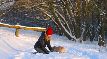 Woman throw snow at her happy dog outdoors Stock mozgókép