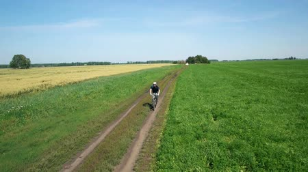 cycle : AERIAL: Young man cycling on bicycle at rural road through green and yellow field. Stock Footage