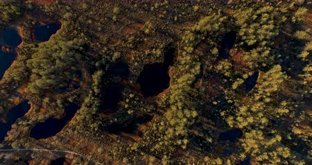 ware : Aerial view from above on scenic swamps and lakes at sunset in the spring with long shadows from the sun