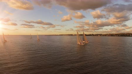 regaty : Aerial view of yachts with sails in the sea with a beautiful scenic sunset views. Yachts in the open sea Wideo