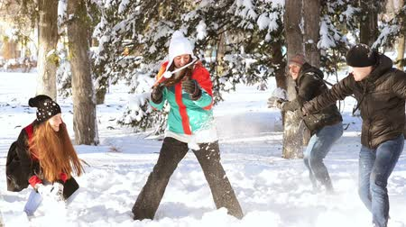 A group of young happy people playing in the snow Stok Video