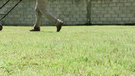 yards : Low angle shot of a man mowing a lawn Stock Footage