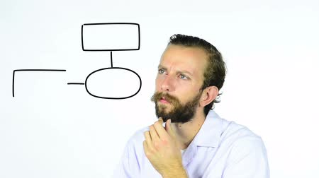 functionality : Man watching an animated flow chart being draw on an interactive whiteboard