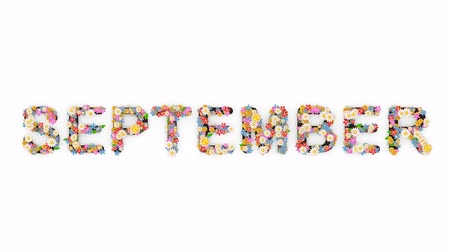 nove : Floral calendar month text animation, September.