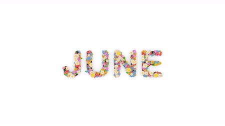 meses : Floral calendar month text animation, June.