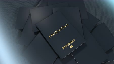 documents : Artist rendering Argentina travel passport.