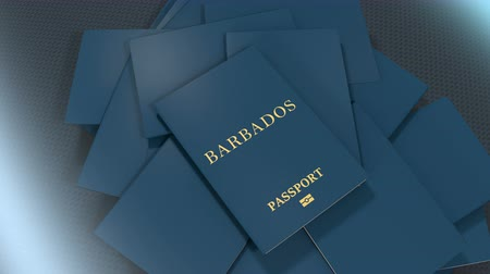barbados : Artist rendering Barbados travel passport.
