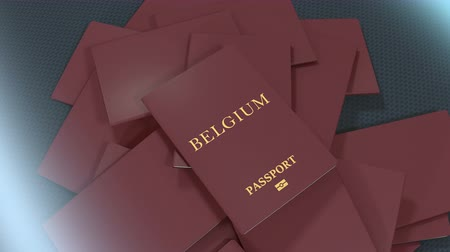 pasaport : Artist rendering Belgium travel passport.