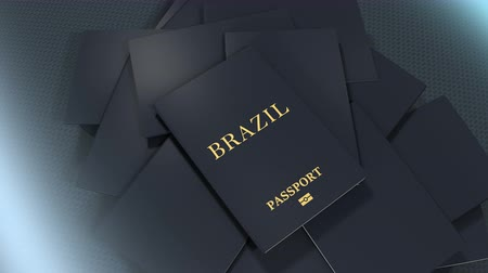 pasaport : Artist rendering Brazil travel passport.