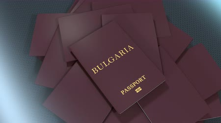 damga : Artist rendering Bulgaria travel passport. Stok Video