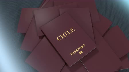 damga : Artist rendering Chile travel passport. Stok Video