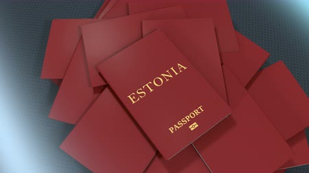 pasaport : Artist rendering Estonia travel passport.