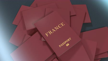 pasaport : Artist rendering France travel passport. Stok Video