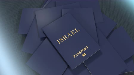 pasaport : Artist rendering Israel travel passport.