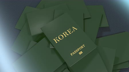 pasaport : Artist rendering Korea travel passport.