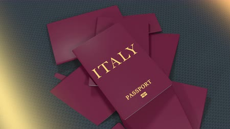 pasaport : Artist rendering Italy travel passport.
