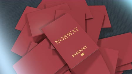 migração : Artist rendering Norway travel passport.