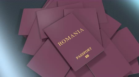 pasaport : Artist rendering Romania travel passport.