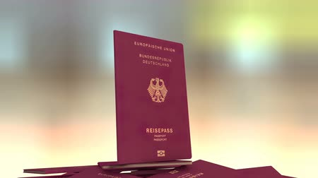 pasaport : Artist rendering Germany travel passport.